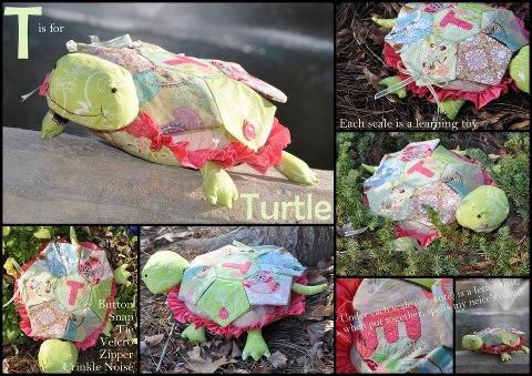 Torreya Turtle